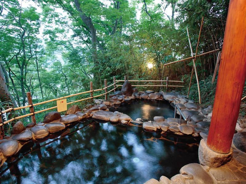 【展望露天風呂】雄大な北アルプスの眺望が愉しめる