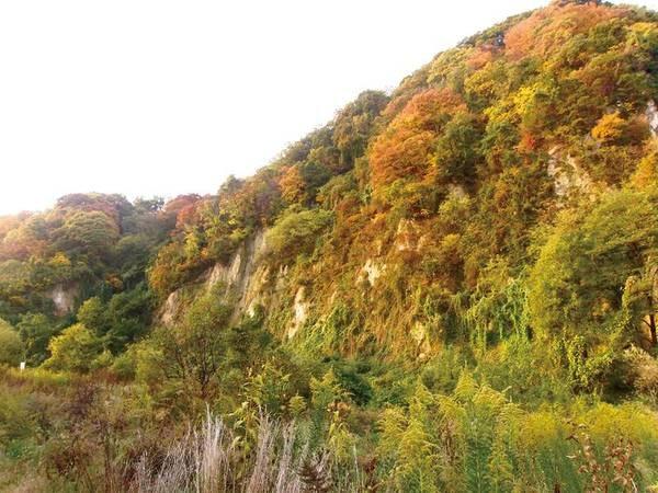 【露天風呂からの紅葉/例】秋になると紅葉も楽しめます