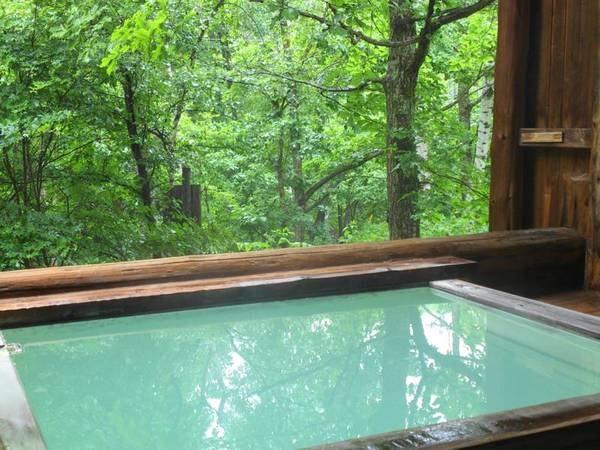 【ピーポロ乗鞍】木々に囲まれ自然を満喫出来る宿。温泉露天は、眼下に流れる沢のせせらぎを聞きながら入浴出来ます。