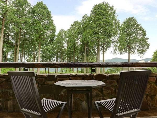 【館内/テラス】森と芦ノ湖、そして富士山をご覧いただけます。