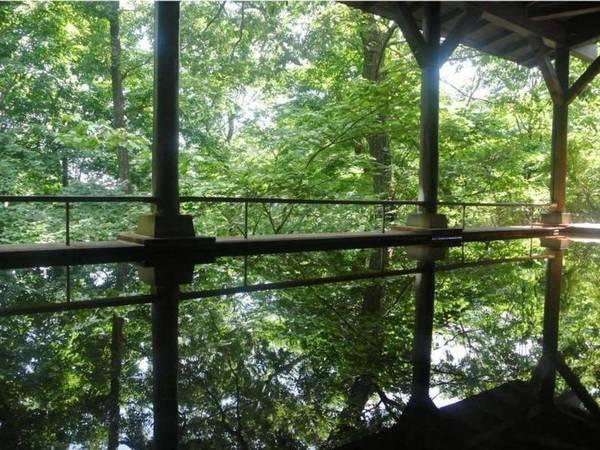 【那須温泉 ホテルハーヴェスト那須】那須の静かな森に佇む『別荘感覚』の大人の癒し空間